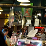 Fish Toss_Blog