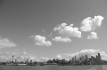 Seattle Skyline_BW_Blog