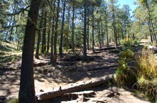 Uphill_Blog